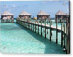 Maldives Acrylic Print by Shirley Mitchell
