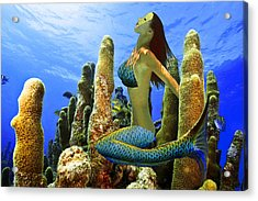 Masked Mermaid Acrylic Print by Paula Porterfield-Izzo