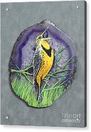 Meadow Soloist I Acrylic Print by Bob Williams
