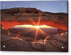 Mesa Arch Acrylic Print by Darryl Wilkinson