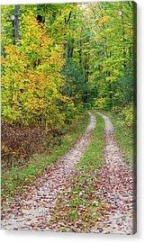 Michigan, Hiawatha National Forest Acrylic Print