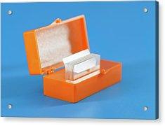 Microscope Slides Acrylic Print by Wladimir Bulgar