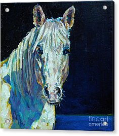 Midnight Ride Acrylic Print