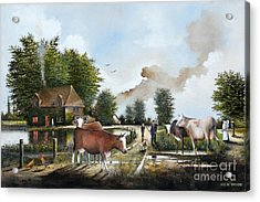 Milking Time Acrylic Print