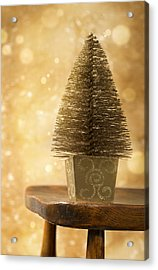 Miniature Christmas Tree Acrylic Print by Amanda Elwell
