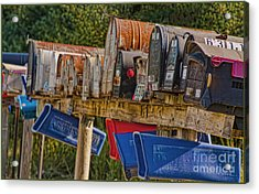 Mister Postman Acrylic Print by Timothy J Berndt