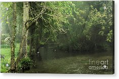 Misty Morning In Clatford Acrylic Print