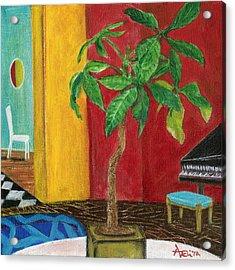Money Tree In The Music Room Acrylic Print by Adelita Pandini