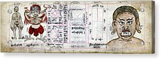 Mongolian Astrology Acrylic Print by National Library Of Medicine