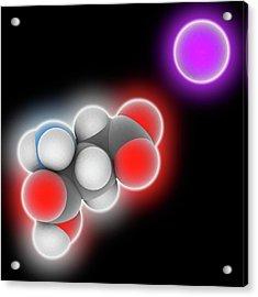 Monosodium Glutamate Molecule Acrylic Print by Laguna Design