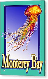 Monterey Bay Jellyfish Acrylic Print by Michelle Scott
