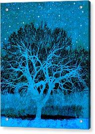Mood Indigo Acrylic Print by Ann Powell