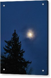 Moon Beyond The Spruce Acrylic Print