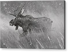 Acrylic Print featuring the digital art Moose Sketch by Aaron Blaise