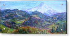 Mountain Patchwork Acrylic Print