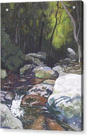 Mountain Stream At Dusk Acrylic Print
