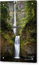 Acrylic Print featuring the photograph Multnomah Falls by Brian Jannsen