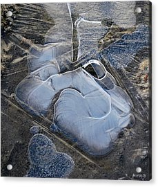 Nature Abstraction Acrylic Print by Marija Djedovic