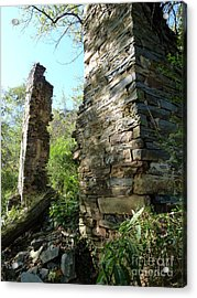 Acrylic Print featuring the photograph Nature's Door by Jane Ford