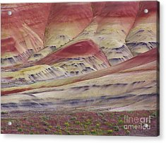 John Day Fossil Beds Painted Hills Acrylic Print