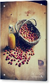 Natures Harvest Acrylic Print by Tim Gainey