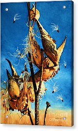 Nature's Launch Pad Acrylic Print by Barbara Jewell