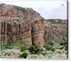 Nevada Desert Acrylic Print