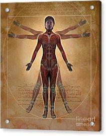 New Vitruvian Woman Acrylic Print by Jim Dowdalls