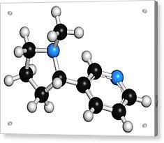 Nicotine Tobacco Stimulant Molecule Acrylic Print by Molekuul