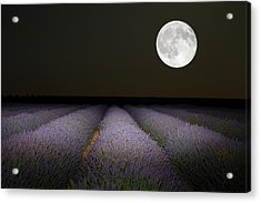 Night Scene With Moon In Lavender Field Acrylic Print