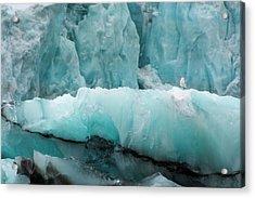 Norway Svalbard Spitsbergen Hornsund Acrylic Print by Inger Hogstrom