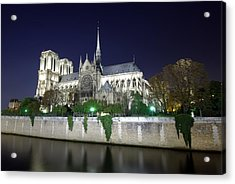 Notre Dame Cathedral Acrylic Print by Ioan Panaite