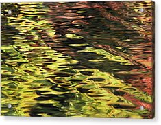Oak And Maple Trees Reflections In Acrylic Print by Thomas Kitchin & Victoria Hurst