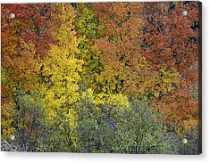 Ode To Autumn  Acrylic Print