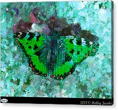 On The Rocks Teal Acrylic Print by Holley Jacobs