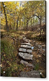 One Step At A Time Acrylic Print by Iris Greenwell