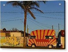 Orange Sunshine Acrylic Print by Skip Hunt