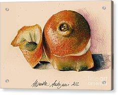 Orange..navel Acrylic Print by Alessandra Andrisani