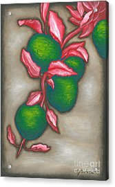 Otherwise Apples Acrylic Print by Gareth Andrew