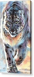 Out Of Nowhere - Snow Leopard Acrylic Print by Christine Karron