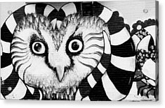Acrylic Print featuring the photograph Owl Mural by Ricky L Jones