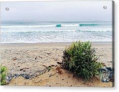Pacific Ocean At Torrey Pines Acrylic Print