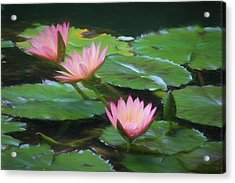 Painted Lilies Acrylic Print