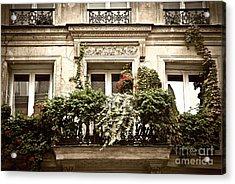 Paris Windows Acrylic Print by Elena Elisseeva