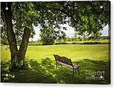 Park Bench Under Tree Acrylic Print by Elena Elisseeva
