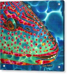 Parrotfish Acrylic Print