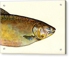 1 Part Chinook King Salmon Acrylic Print by Juan  Bosco