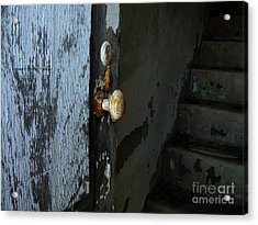 Acrylic Print featuring the photograph Past Age Passage by Lin Haring