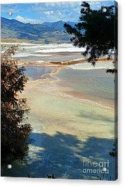 Pastel Acrylic Print by Lauren Leigh Hunter Fine Art Photography