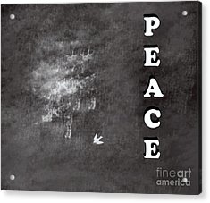 Peace Acrylic Print by Trilby Cole